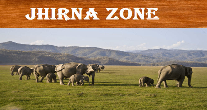 JHIRNA SAFARI ZONE