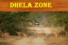 Dhela Safari Zone